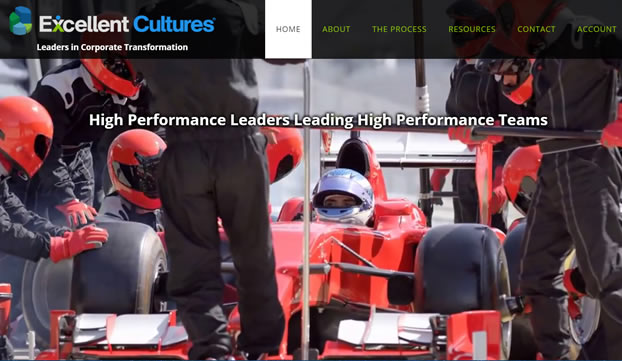 Excellent Cultures - Performance Leaders Leading High Performance Teams