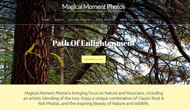 Magical Moment Photos